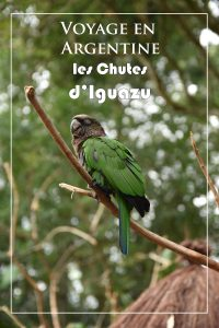 Découvrez mon voyage en Argentine et ma visites des chutes impressionnantes d'Iguazu