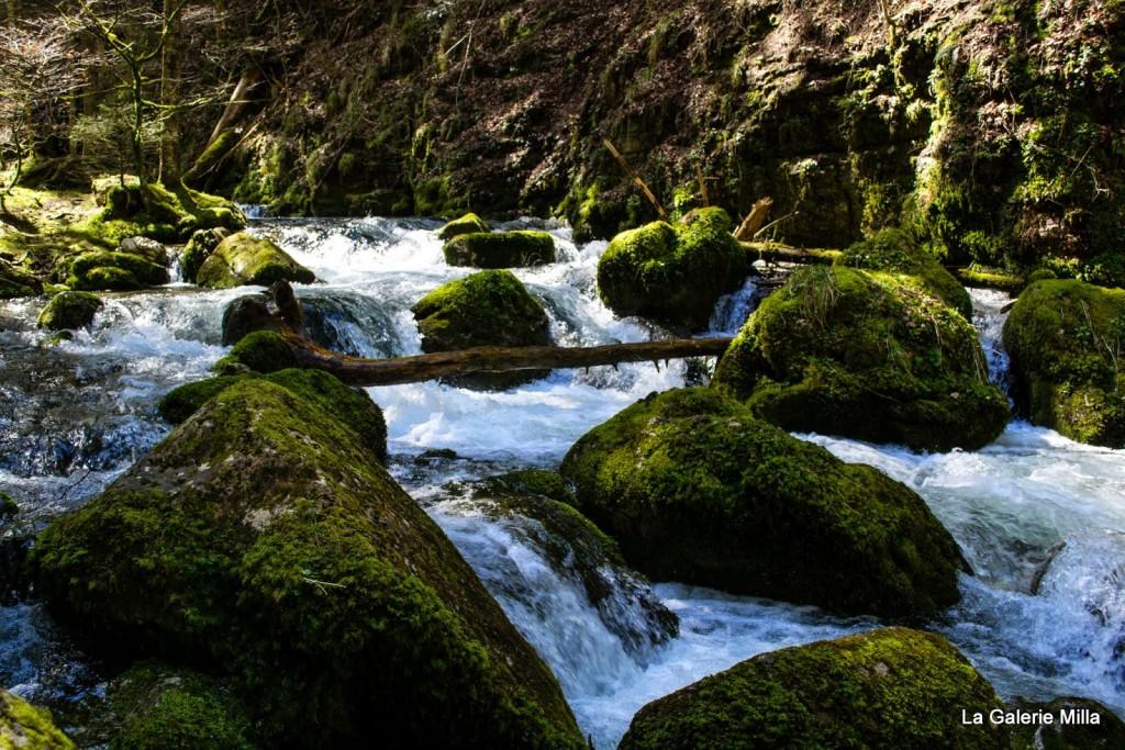 gorges bruyant vercors torrent eau