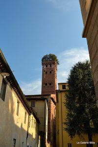 la tour aux arbres