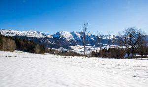 que faire en hiver à Grenoble : raquettes