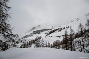 neige et brume