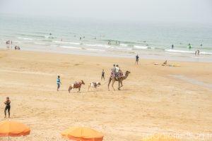 chamaux sur la plage