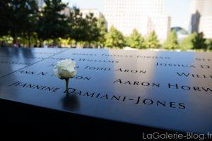 rose sur le memorial du 11 septembre