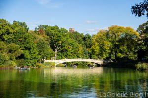 pont a central parc
