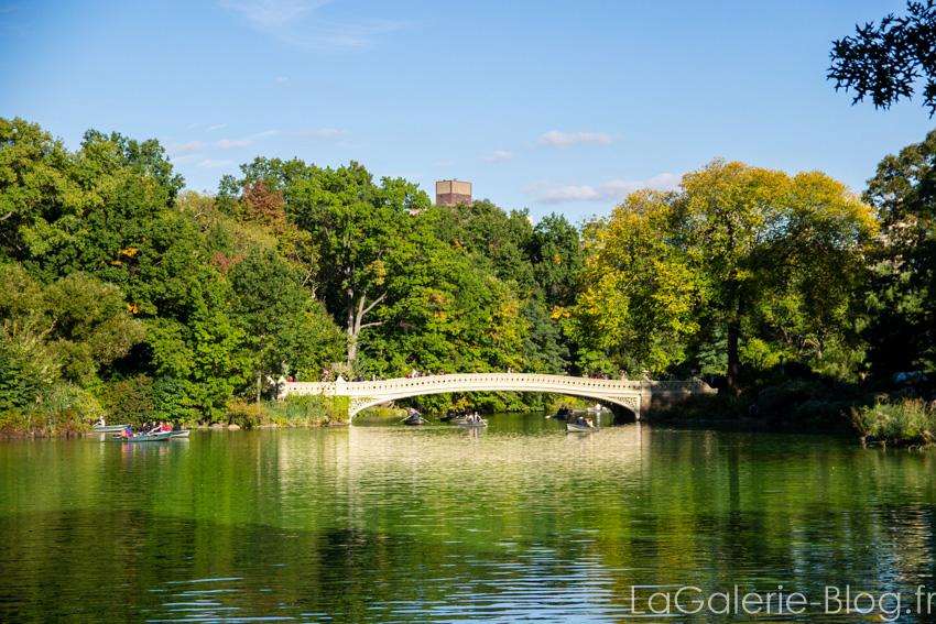 """vue du pont """"the bridge' a central parc"""