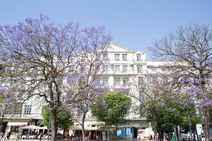 allée à coté de Praça Dom Pedro IV