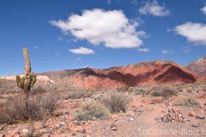 Uquia, desert sous les nuages et cactus, Argentine