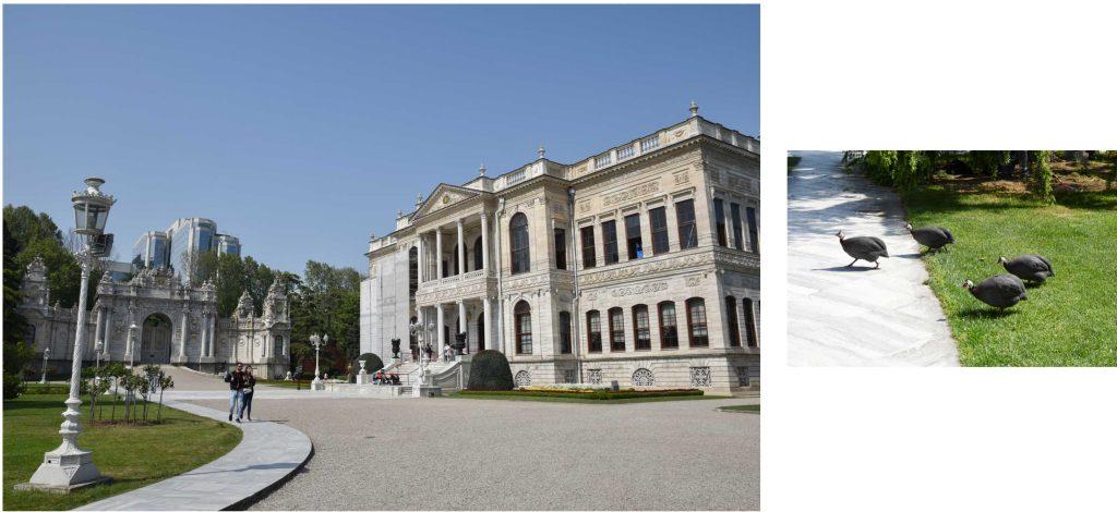 vue du palais dolmabace istanbul
